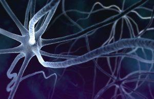 neurofeedback cervello bambino - mente autism